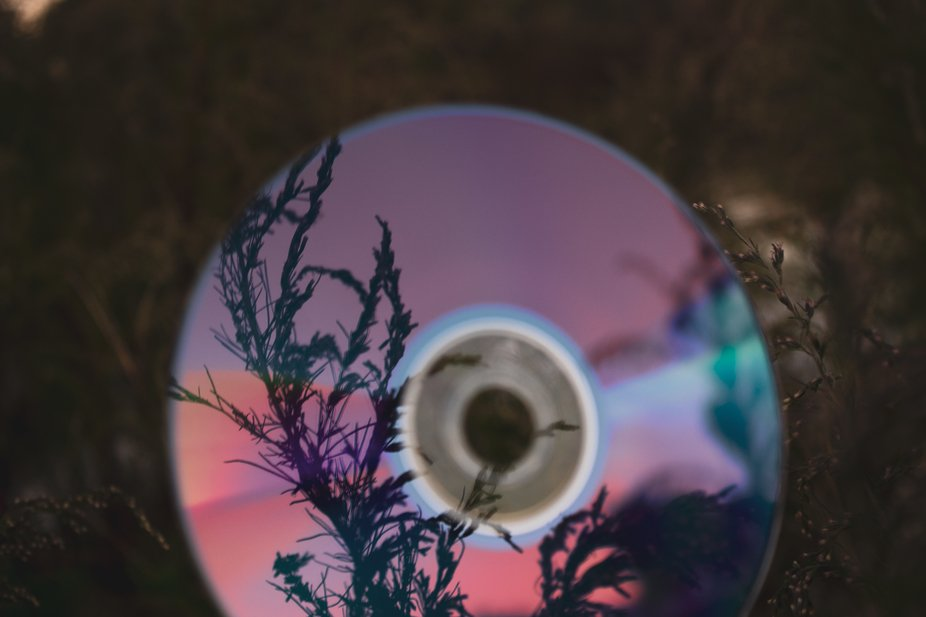I used a CD to Reflect the Sunset on