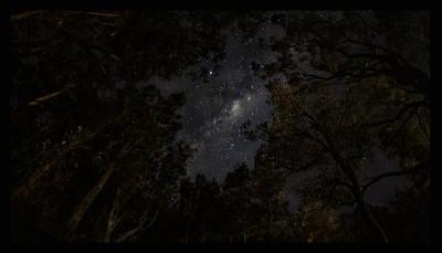 Narrawaly starry night
