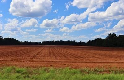 Red Soil Blue Sky