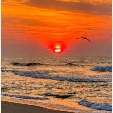 Surf City Sunrise 7-5-20