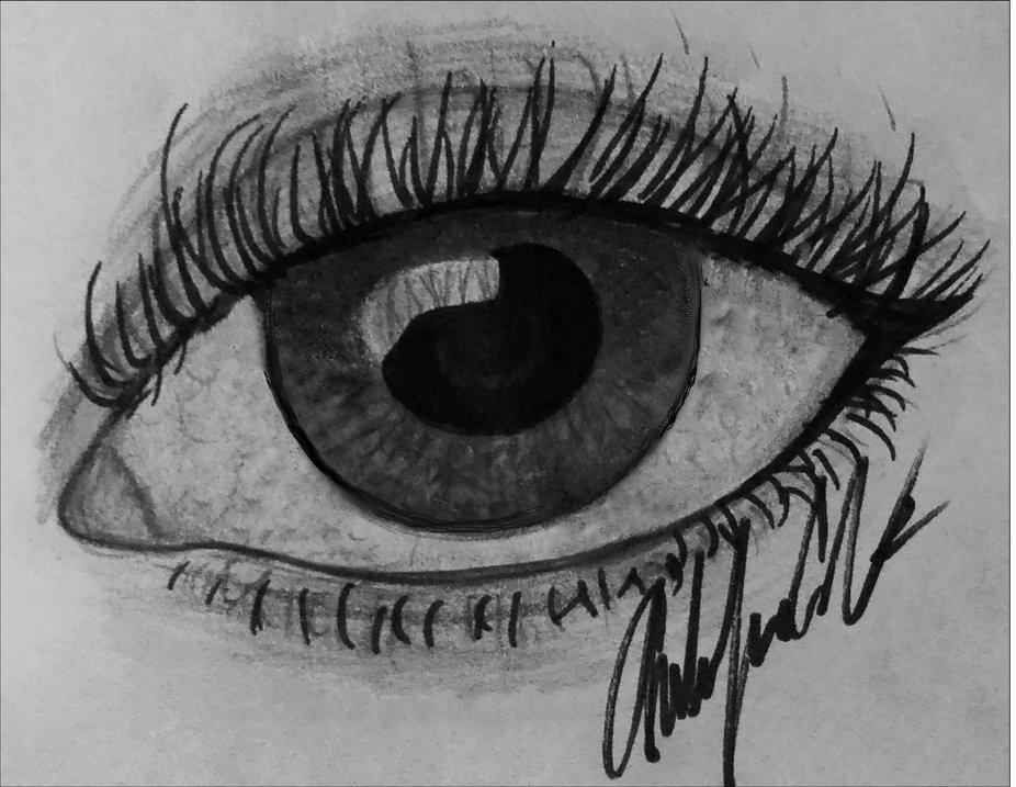 Sketch by Amber Lynne Cates, Photo by B. Lynne Zika