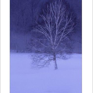 #198-a  Night Landscape