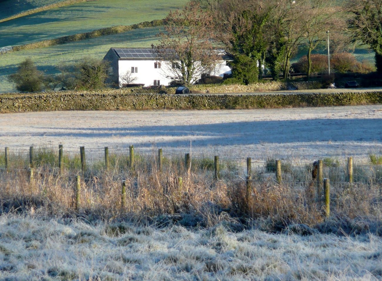Frost on the fields.