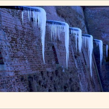 #239 Ice Formations