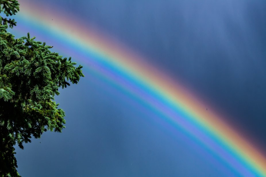 Rainbow Taken in The Rocky Mountains of British Columbia  Canada