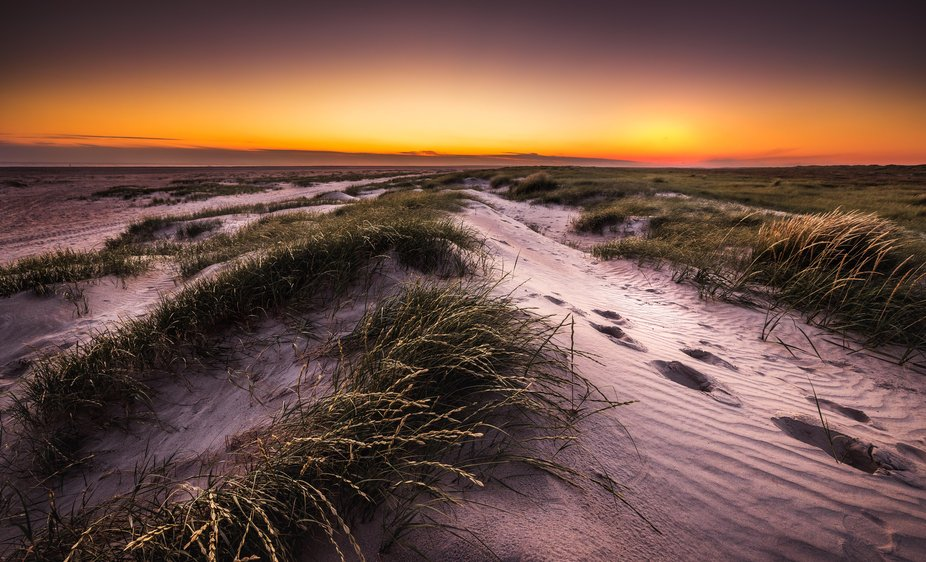 the beautiful nature on Fanø is an exciting area to be in with your camera.  and it becomes no l...
