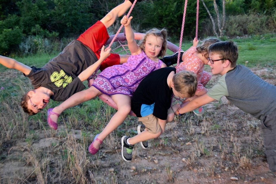 Some of my grandkids were trying out a new tree swing.