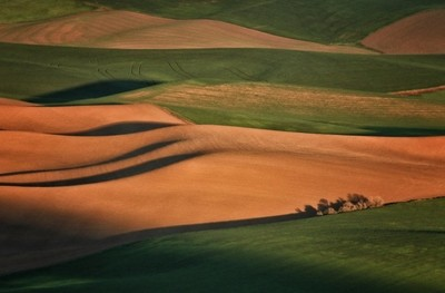 View from Steptoe in Palouse