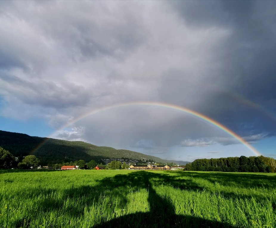 I got this picture today, 29th of july 2020 outside of Notodden, Norway.     Out walking with my ...