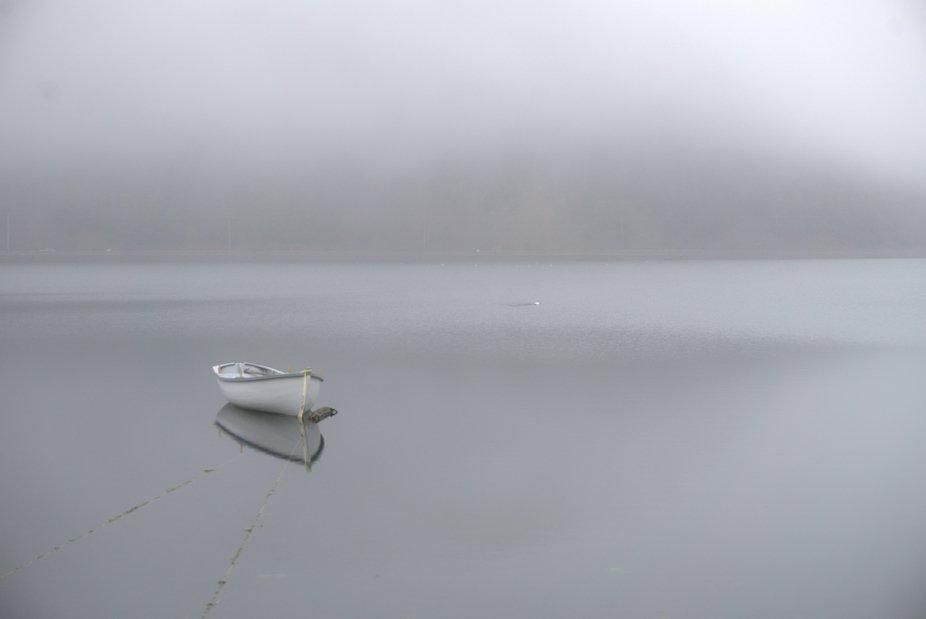 Foggy morning solitude,lglynch,jpg
