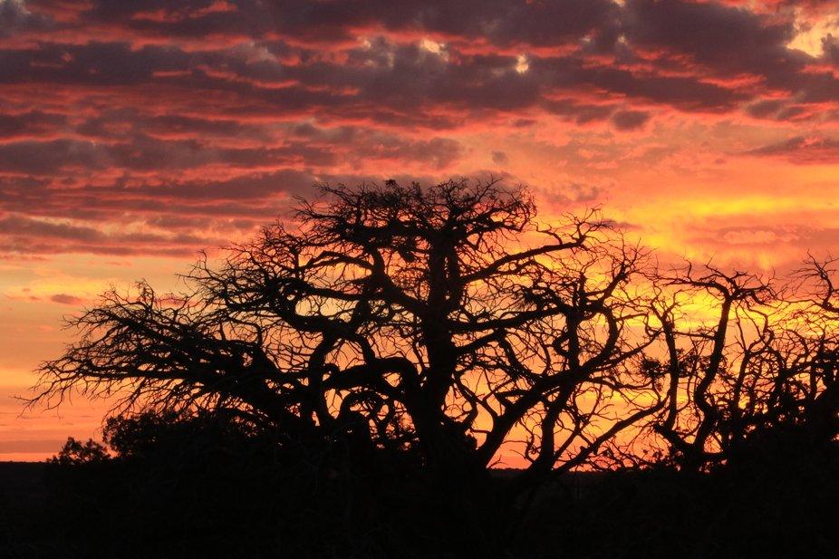 DHP sunset