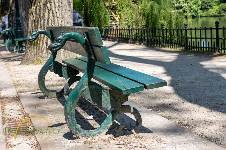 A bench facing the lake in Bruges.