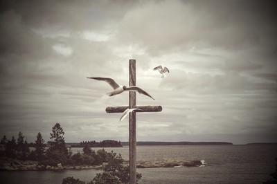 Birds flying around a wooden cross on cliffs