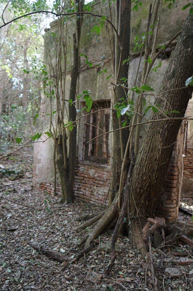 antigua construcción de 1880 Campo Argentino, estancias de la Colonia