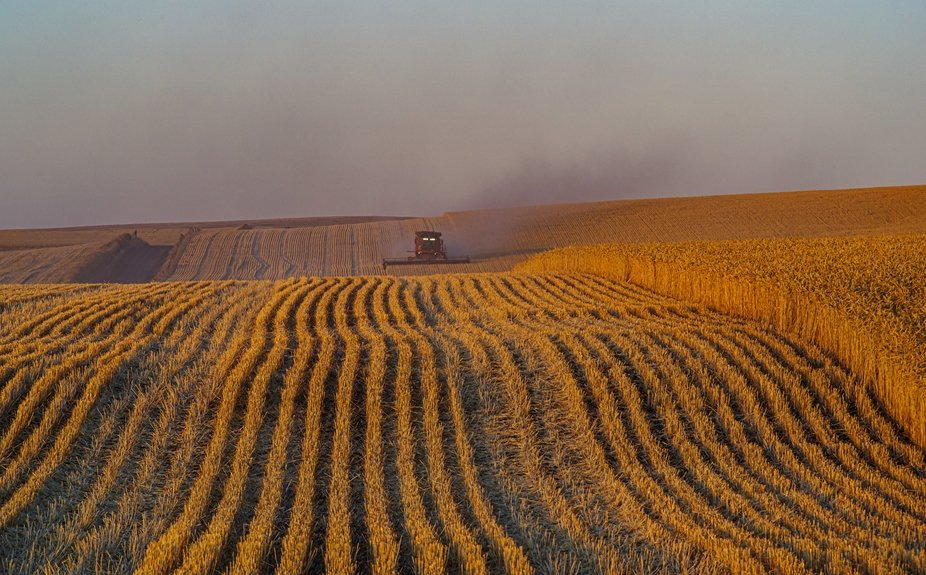Harvestime