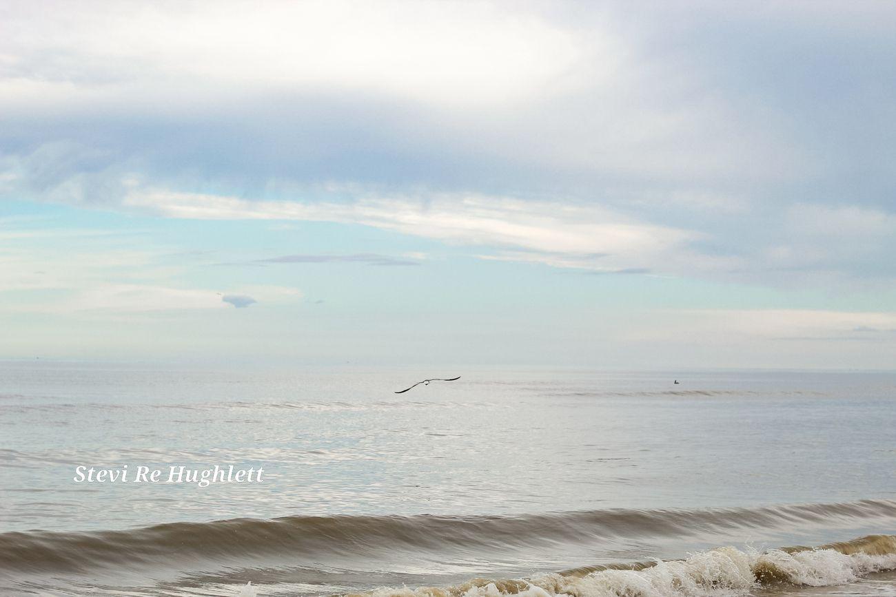 Beach engagment  (19)