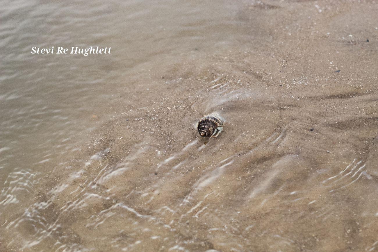 Beach engagment