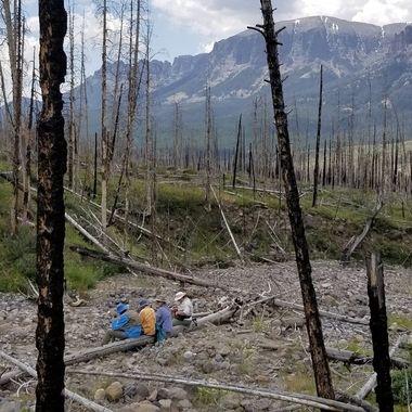 lunch break at Burnt Creek, Wyoming