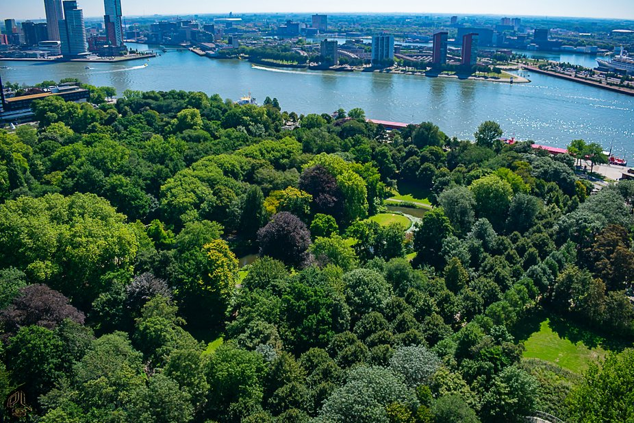 Made this shot from the famous Euromast observation tower in Rotterdam, overlooking Het Park and ...