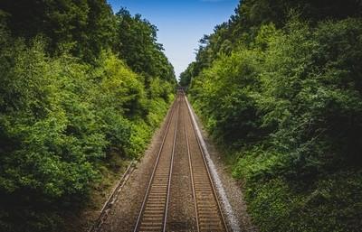 Sutton Park Rail