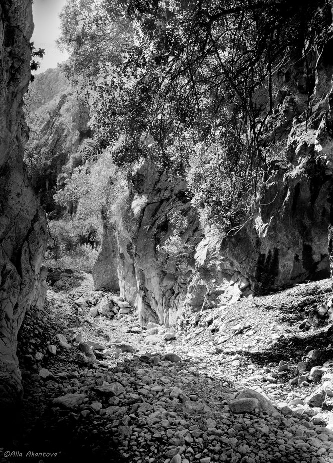 Roads Of Gorges 15
