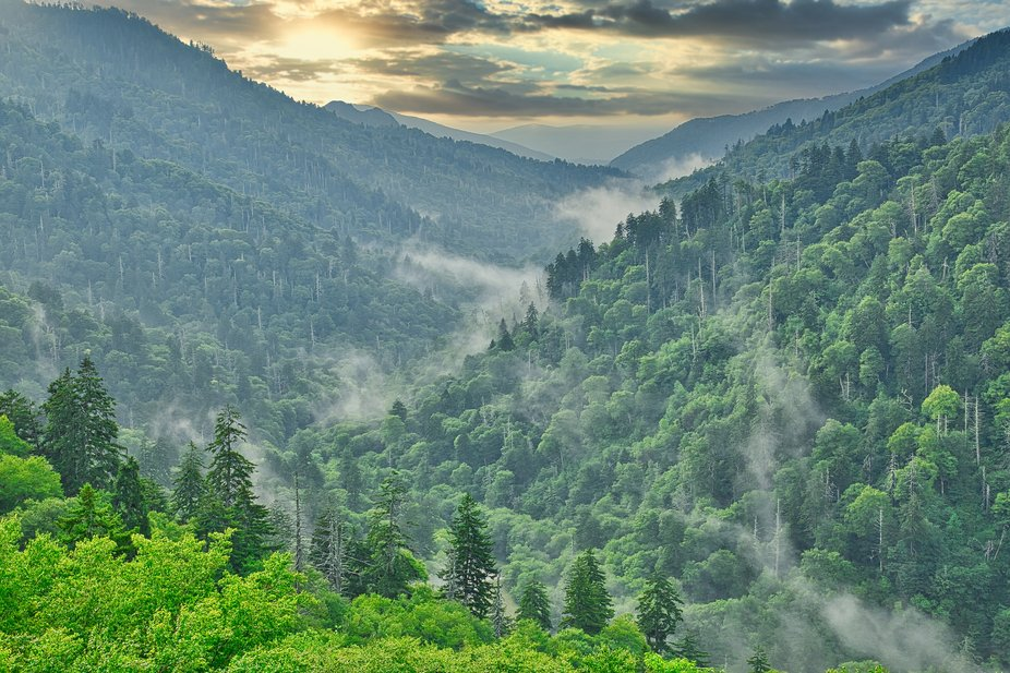 Early morning mist in the Appalachian Valley