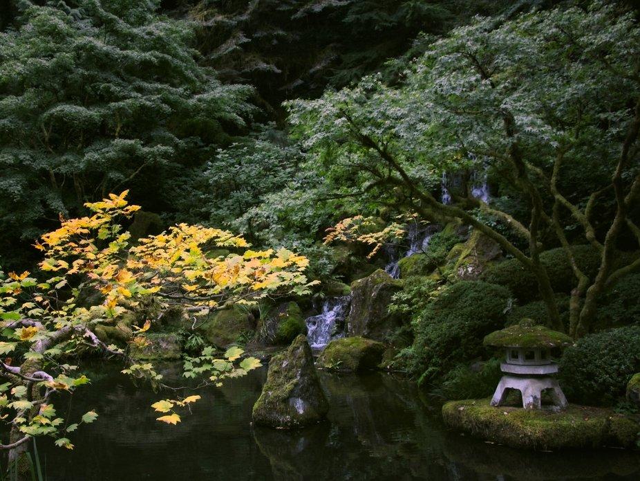 A hidden spot in the Portland, Oregon Japanese Gardens