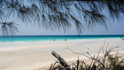 Golds Beach Bahamas