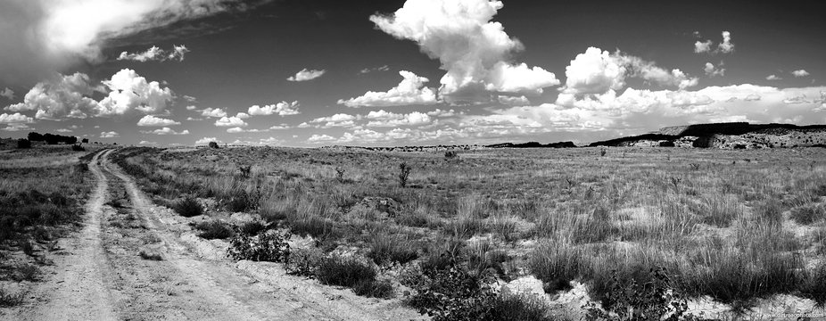 A dirt road in New Mexico.