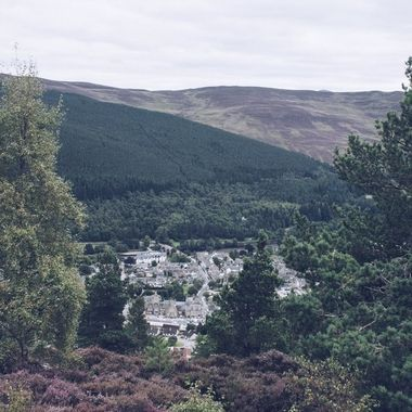 Taken along the Craigendarrach Walk, Ballater.