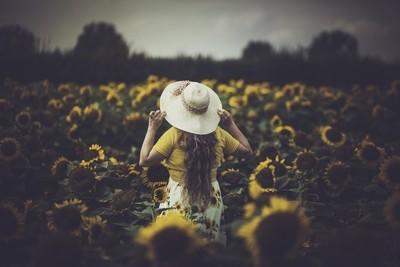 Sunflowers portrait