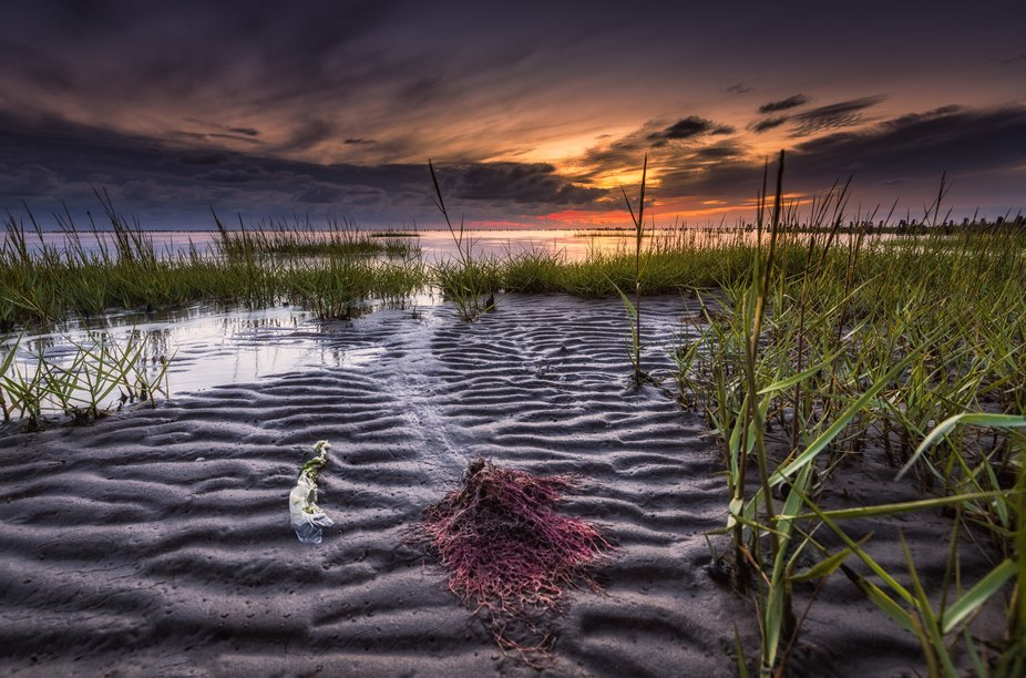 The picture was taken at a low angle and came to make the Wadden Sea even bigger