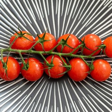 a close up image of a vine of tasty cherry tomatoes on a patterned grey plate