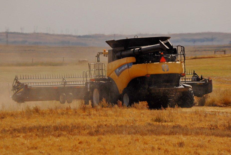 Harvest Time in Southwest Saskatchewan (NW of Swift Current, Sk - 2020 September 04)