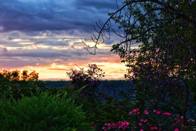 Explosion of color at sunset, Untermeyer Gardens, Yonkers, NY