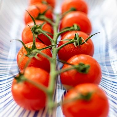 a vine of cherry tomatoes horizontally on a ceramic plate