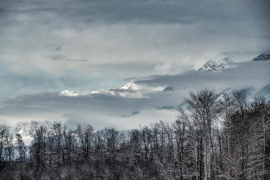 Columbia valley BC
