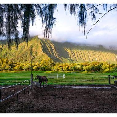 Sunrise over the Waimanalo Polo Field