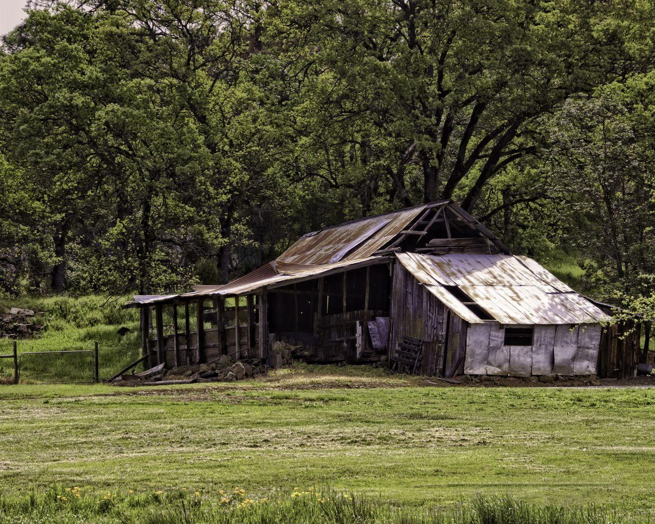 Barn on highway 49 in Auburn California