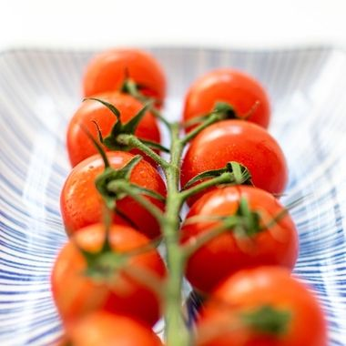 a vine of cherry tomatoes macro and horizontally on a ceramic plate