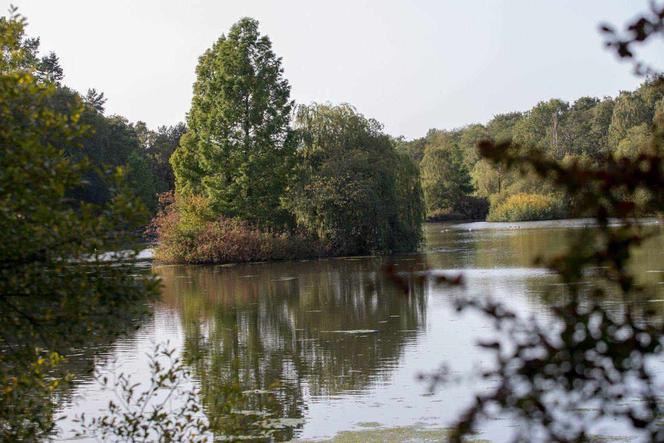 Golden Acre Country Park