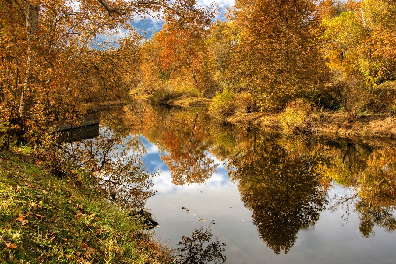 Fall Color Reflections on the Yuba River at Hammon Grove Park in Browns Valley California