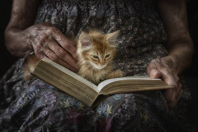 A little tale about a little cat by teodorasarbinska - My Best Capture Photo Contest