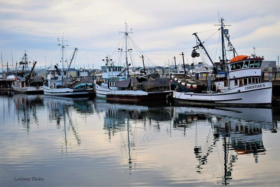 Marina-Everett