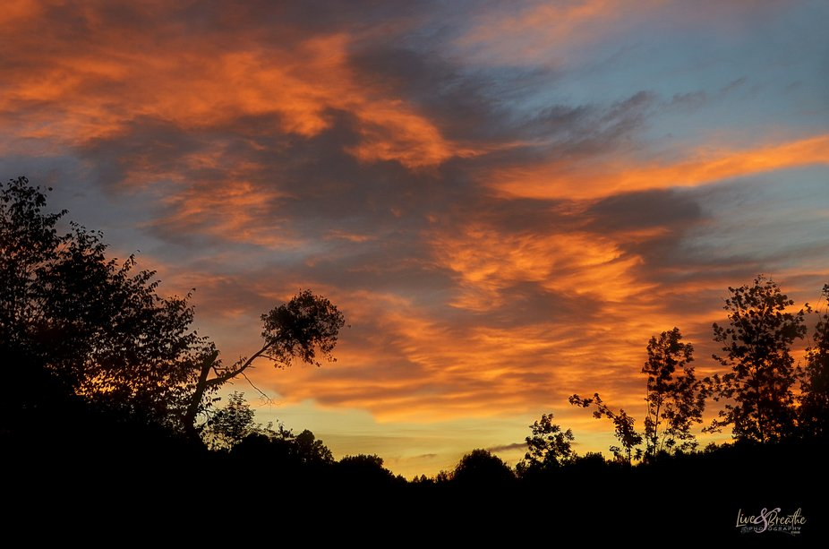 Captured this sunrise out my bedroom window.