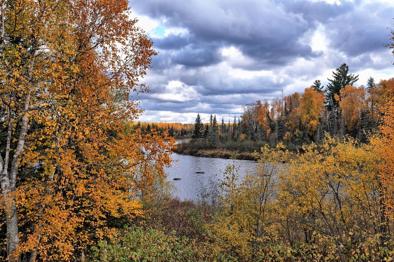Sitting on the shores of the Stony river, looking at the colors of fall.