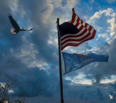 DSC_4791 Flag 1