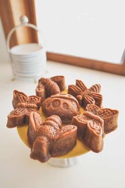 Bug Cakes