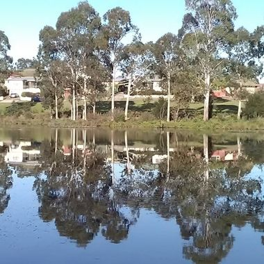 Morning reflections on the lagoon