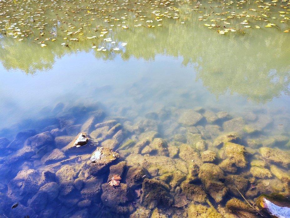 Finley Riverbank Fall